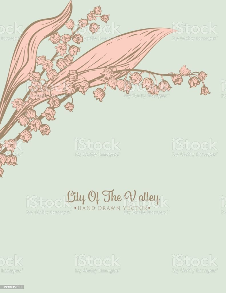 Botanical Lily Of The Valley Invitation Template royalty-free botanical lily of the valley invitation template stock vector art & more images of art product