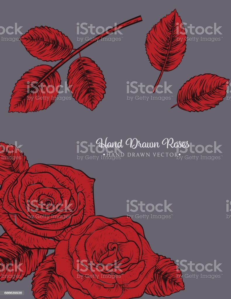 Botanical Roses Invitation Template royalty-free botanical roses invitation template stock vector art & more images of art product