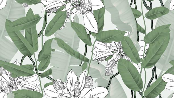 Botanical seamless pattern, banana leaves, vines and other leaves on light green background vector art illustration