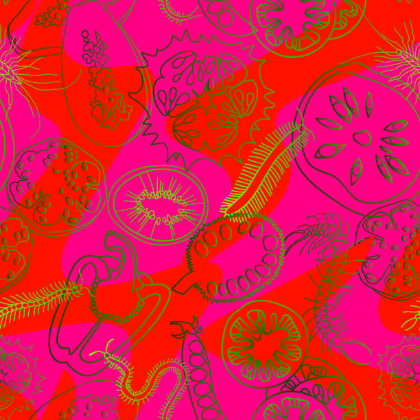 ilustrações de stock, clip art, desenhos animados e ícones de botanical seamless pattern made of vegetables and fruits - red bell pepper isolated