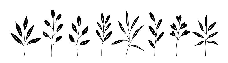 Botanical set of black silhouette twigs with leaves of different shapes. Hand-drawn vector illustration isolated on white background. Perfect for cards, invitations, decorations.