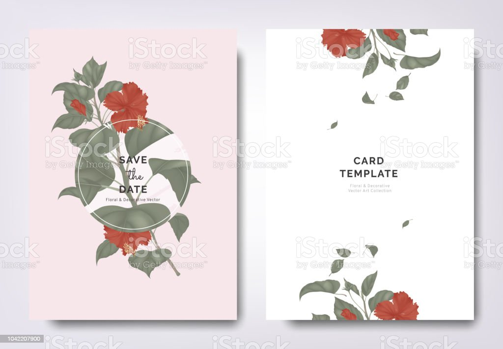 Botanical Wedding Invitation Card Template Design Red Hibiscus Flowers And Leaves With Circle Frame On Background Minimalist Vintage Style Stock