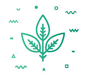 Botanics outline style icon design with decorations and gradient color. Line vector icon illustration for modern infographics, mobile designs and web banners.