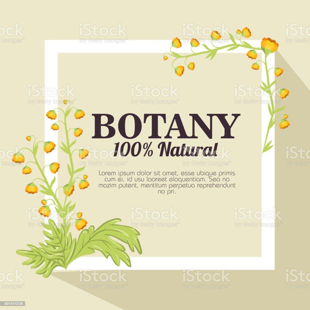 天然植物 100% ベクターアートイラスト