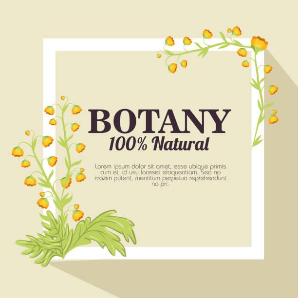 天然植物 100% - 休日/季節ごとのイベント点のイラスト素材/クリップアート素材/マンガ素材/アイコン素材