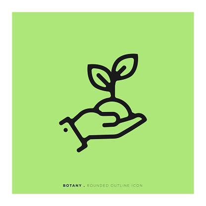 Botany Rounded Line Icon