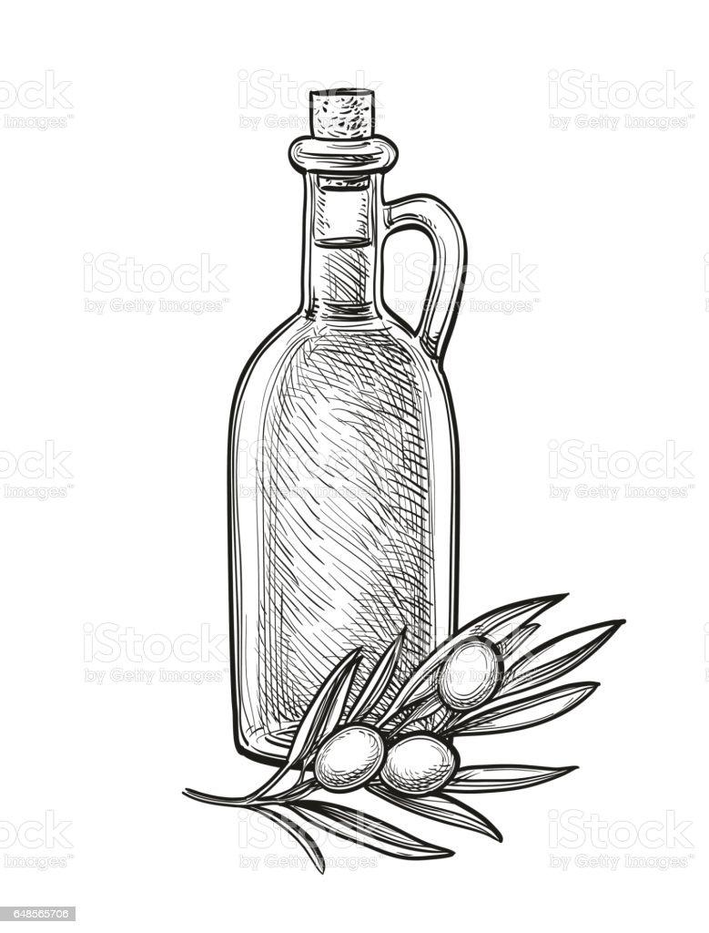 Bottle of olive oil and olive branch. - ilustração de arte vetorial