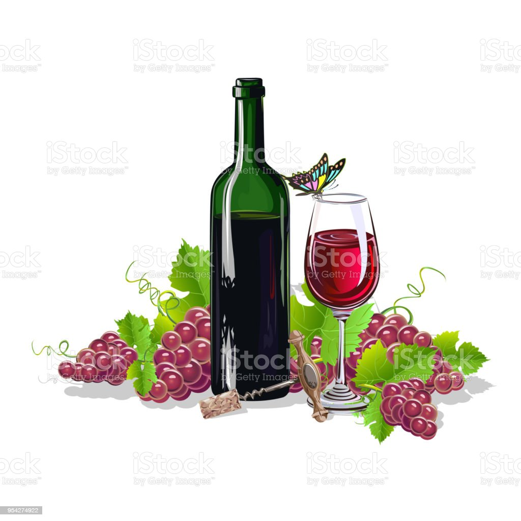 A bottle of wine with bunches of grapes. Realistic vector...