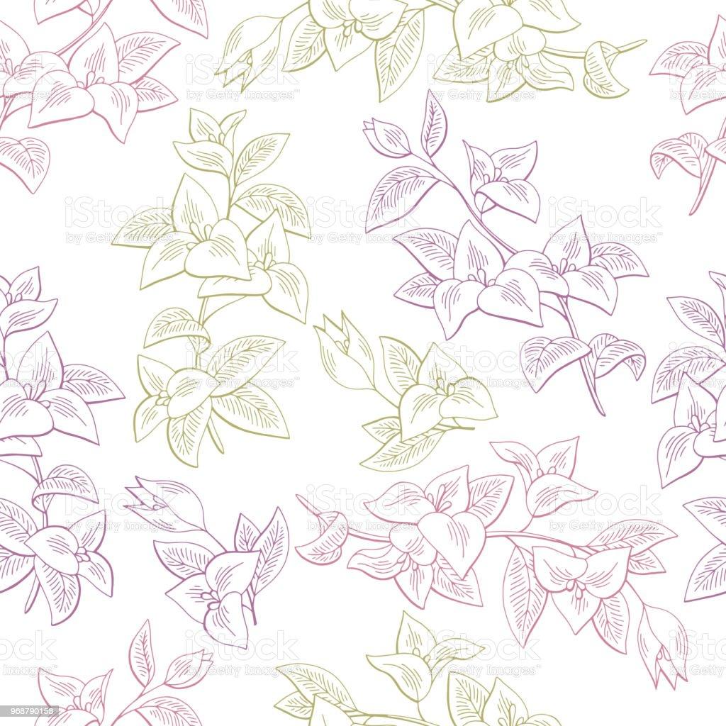 İllüstrasyon vektör Bougainvillea çiçek grafik rengi Dikişsiz desen arka plan kroki vektör sanat illüstrasyonu