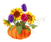 Bouquet autumn flowers with pumpkin, yellow sunflowers, orange gerbera daisy flower, blue, red asters on white background. Digital draw, illustration in watercolor style for Thanksgiving, vector