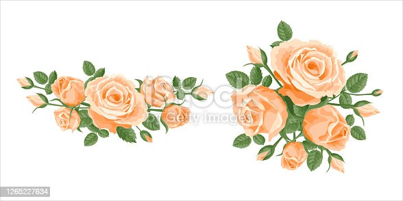 Bouquet, garland of roses. Vector set flower posy decoration for anniversary, cards, greetings. Valentine's day, mother's day. Salmon, apricot orange roses with leaves in a bunch bouquet, frame, corner.