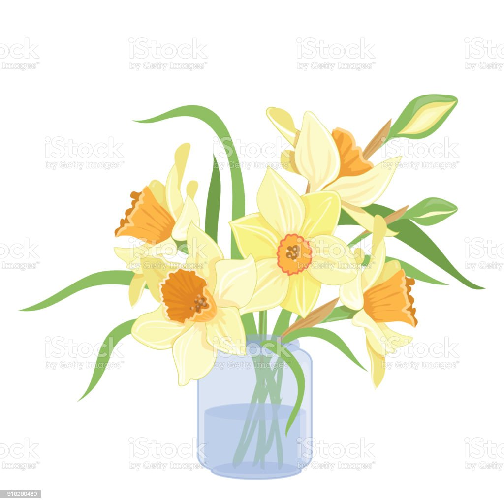 Bouquet Narcissus In A Vase Isolated Vector Clipart Illustration Of ...