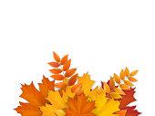 Bouquet of fallen autumn leaves. Seasonal border with tree leaves, on white background. Design for poster, flyer, sale banner, greeting or invitation card, realistic style.