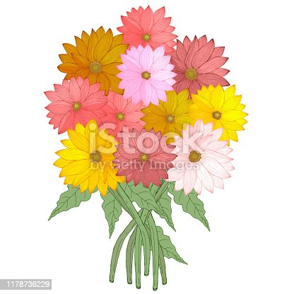 Bouquet of hand drawn daisies gerberas flowers colorful red pink yellow and green leaves vector illustration