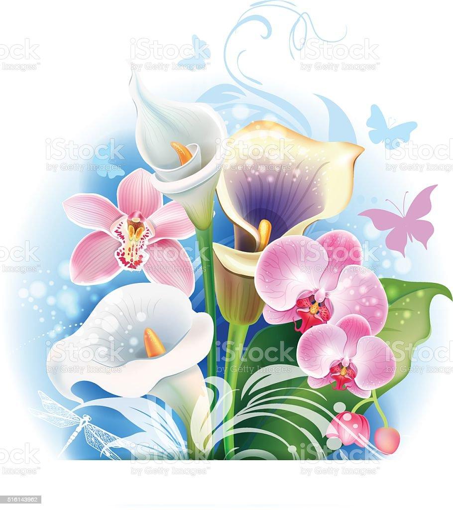 Bouquet de fleurs d'orchidées et Calla - Illustration vectorielle