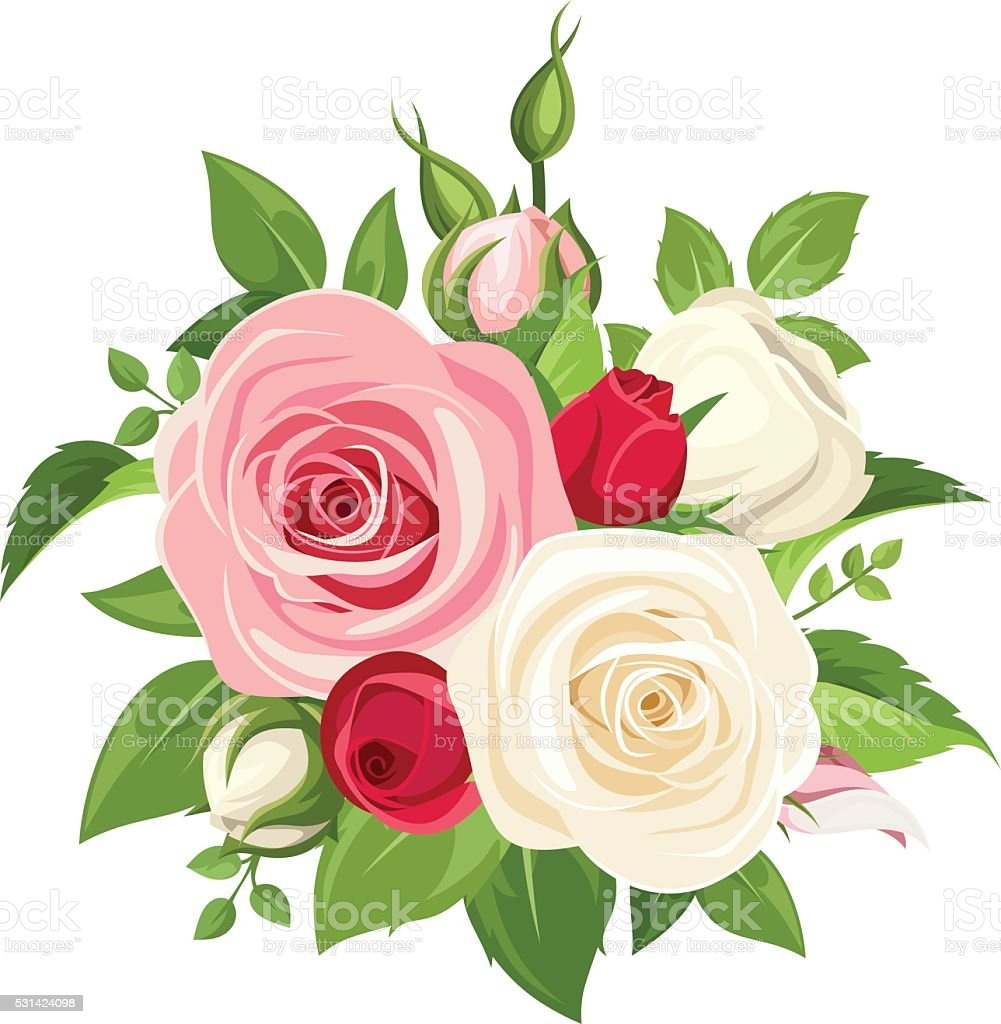 Vector bouquet of red, pink and white roses and buds isolated on a...