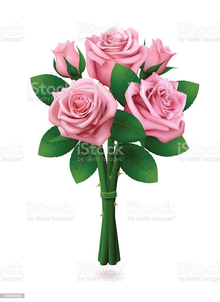 Bouquet of pink roses on white background vector art illustration