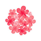 Red Pink flowers isolated on White background. Bouquet. Apple-tree flowers. Cherry blossom. Vector EPS 10 cmyk