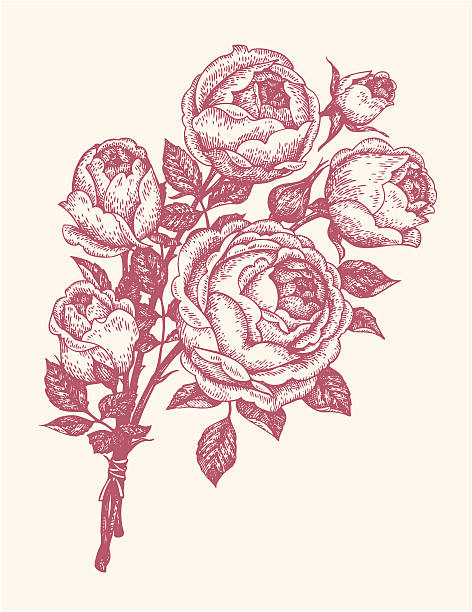 bouquet of roses Floral design elements etching stock illustrations