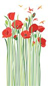 An original artwork vector illustration of a bouquet of scarlet poppies in early spring. Springtime flowers with tall green stems on a white background. Vertical portrait composition, that may serve as a postcard, flyer, poster, invitation, wallpaper, shop window that brings freshness, Remembrance Day, commemoration, Easter, peace, freedom, love, XOXO.
