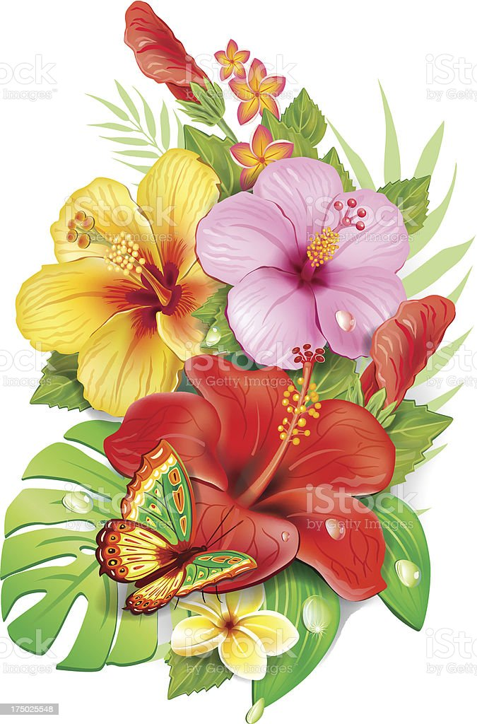 Fiori Tropicali.Bouquet Of Tropical Flowers Stock Illustration Download Image