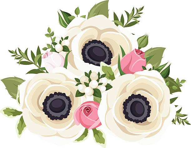 anemone anemone anemone flower clip art vector images illustrations istock