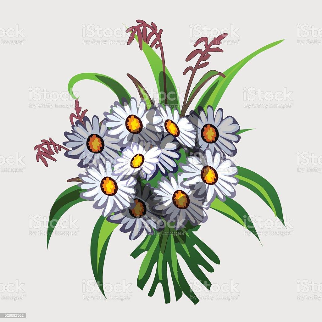 Ramo De Flores Silvestres Branco Ilustração Vetorial Arte Vetorial