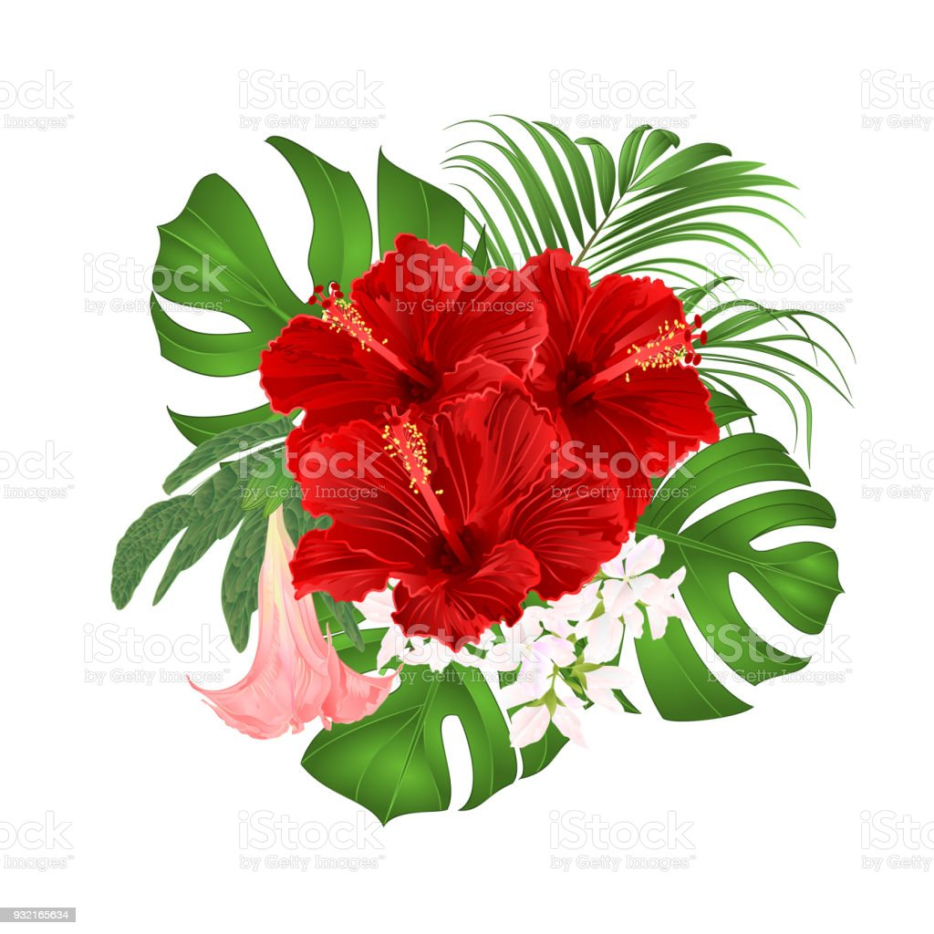 Bouquet With Tropical Flowers Floral Arrangement With Beautiful Red