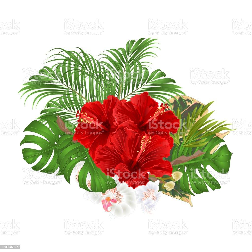 Ilustración De Ramo Tropical Flores Arreglo Floral Con