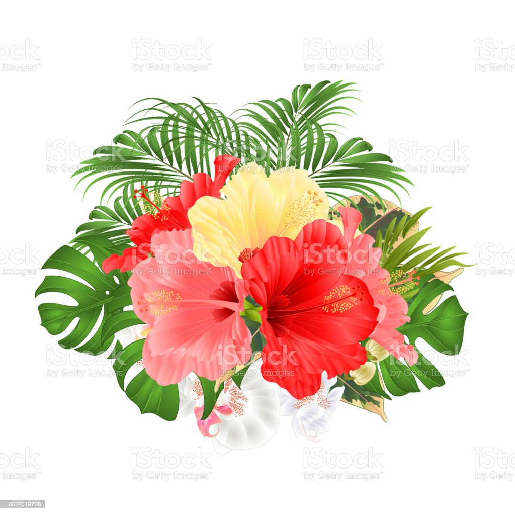 Bouquet With Tropical Flowers Floral Arrangement With Red Pink And