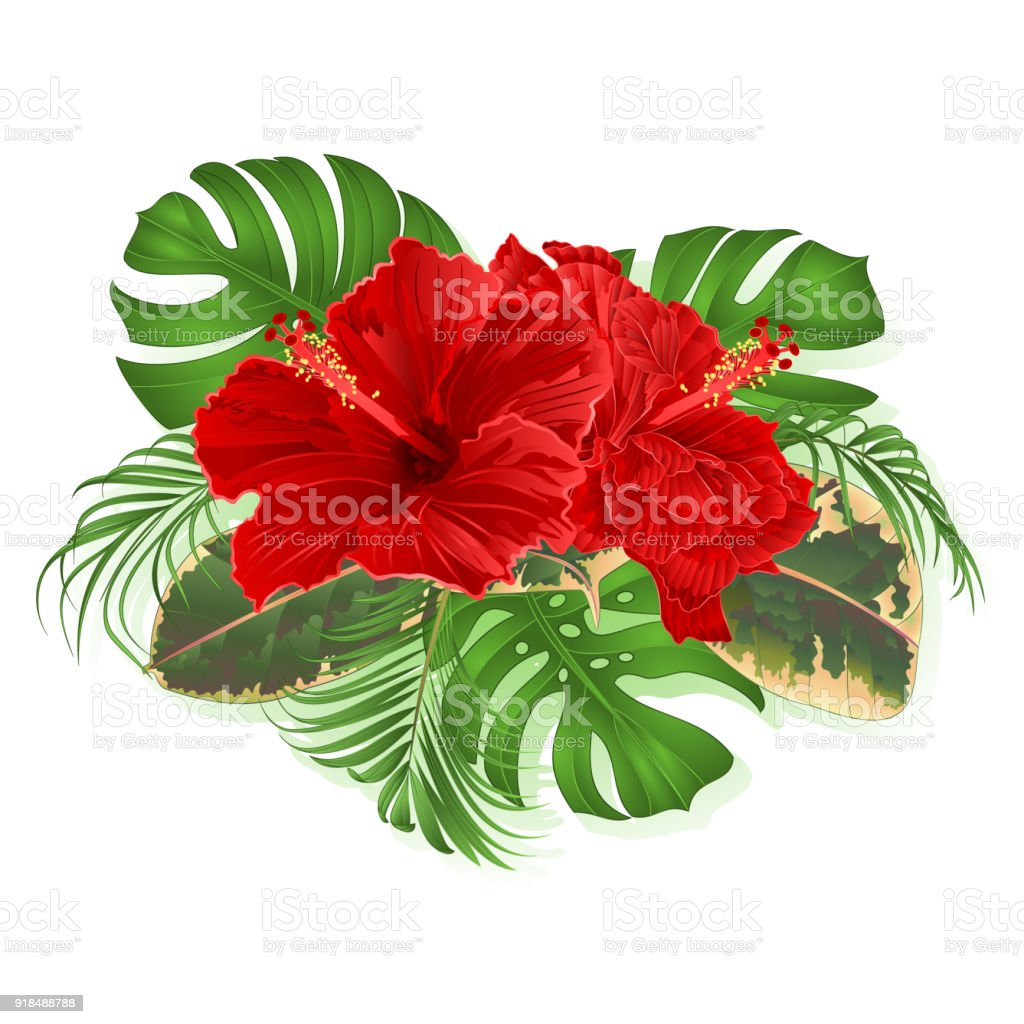 Bouquet with tropical flowers hawaiian style floral arrangement with bouquet with tropical flowers hawaiian style floral arrangement with beautiful hibiscus palmphilodendron izmirmasajfo