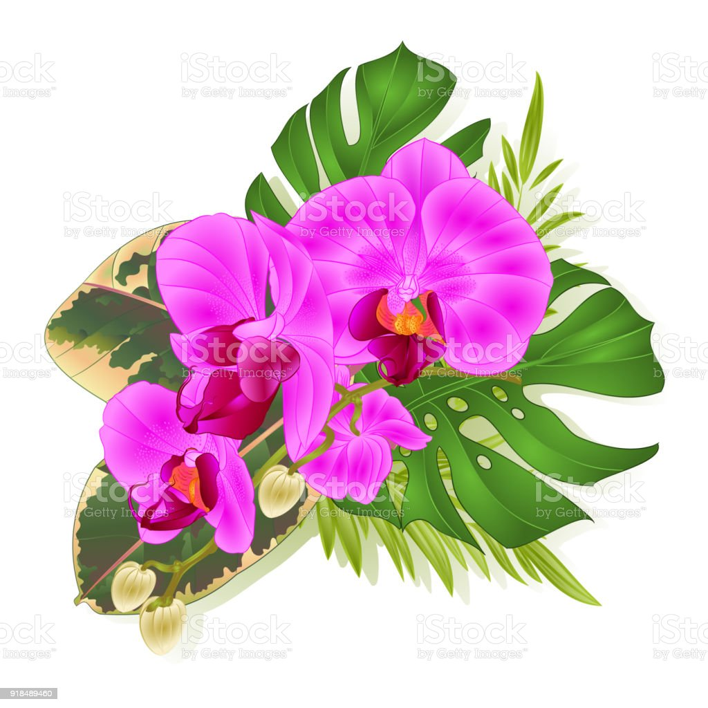 Bouquet With Tropical Flowers Hawaiian Style Floral Arrangement With ...
