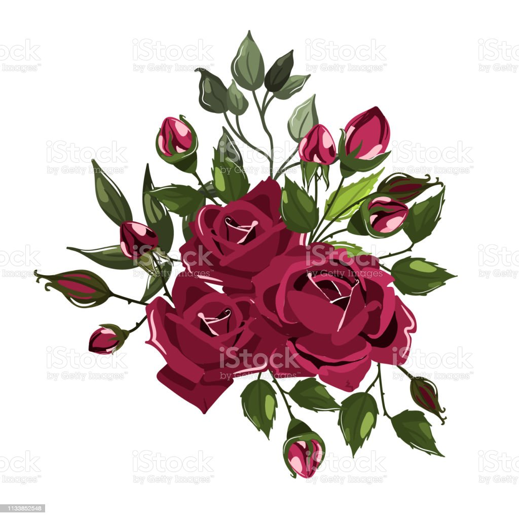 Bouquets of bordo flower roses with green leaves векторная иллюстрация