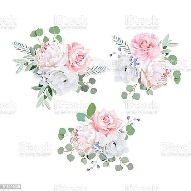 Bouquets of rose peony anemone camellia brunia flowers and eucaliptis vector id518024208?b=1&k=6&m=518024208&s=612x612&h=cieevhdiq67m6xe5tcae cyfoknwgpnjhwm3tvwxuwk=