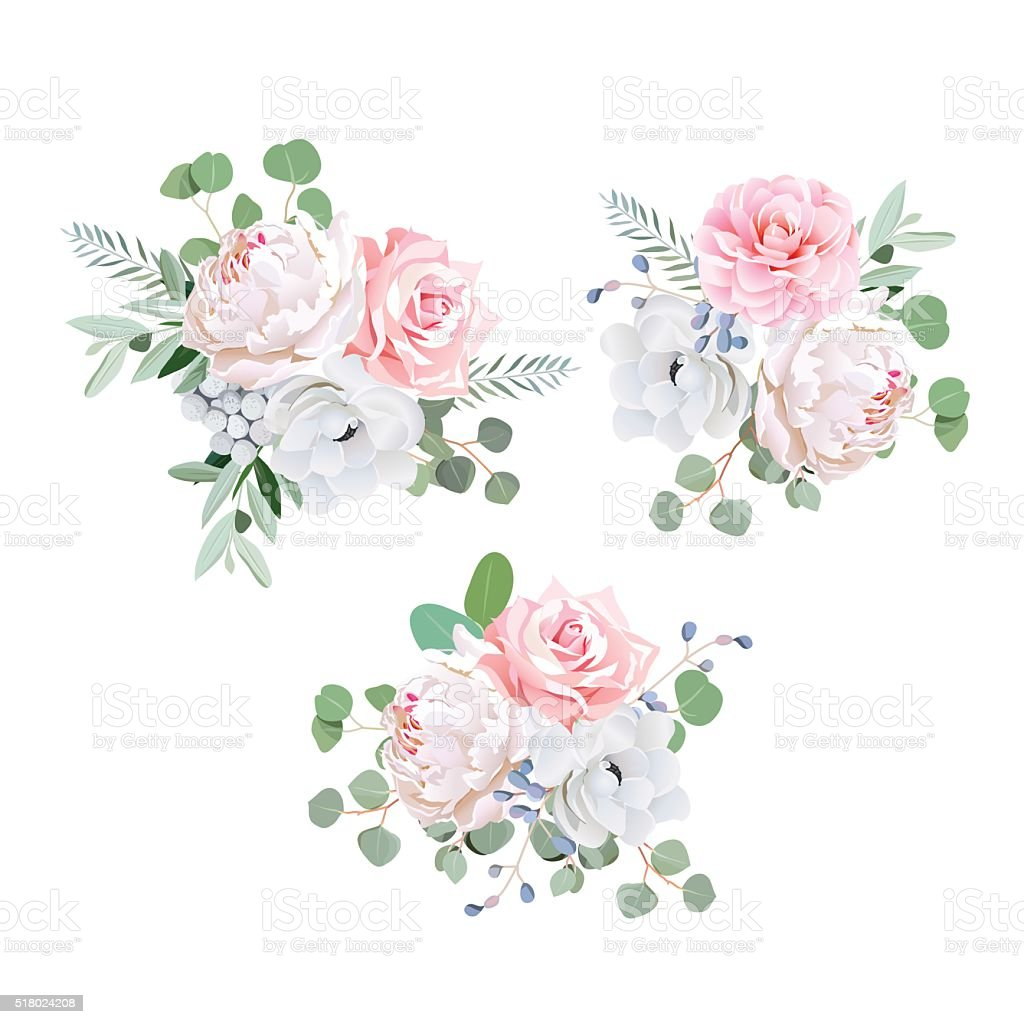 Bouquets of rose, peony, anemone, camellia, brunia flowers and eucaliptis vector art illustration