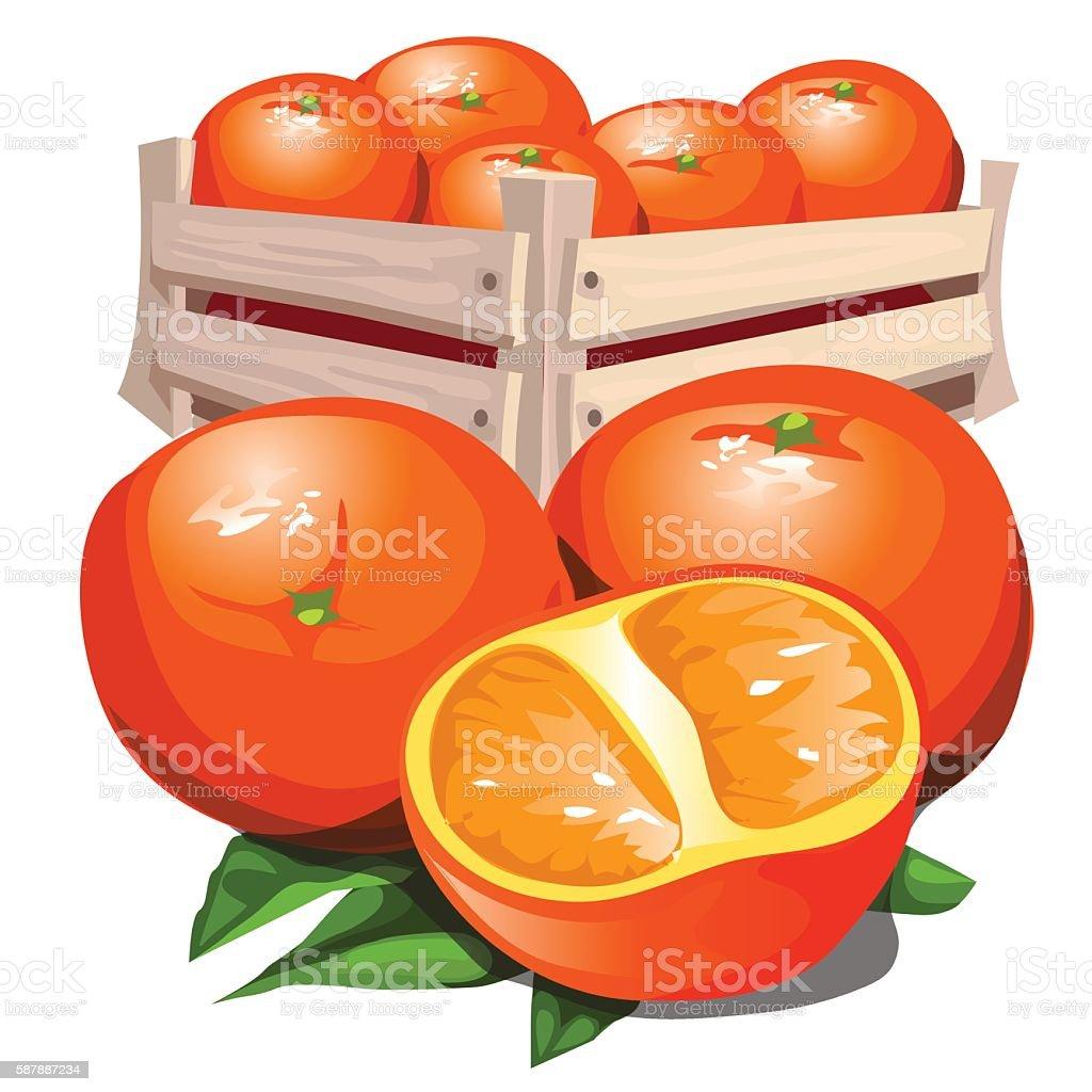 Box of fresh ripe orange with leaves vector art illustration