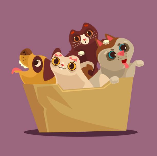 stockillustraties, clipart, cartoons en iconen met vak met dieren. aanneming concept - adoptie