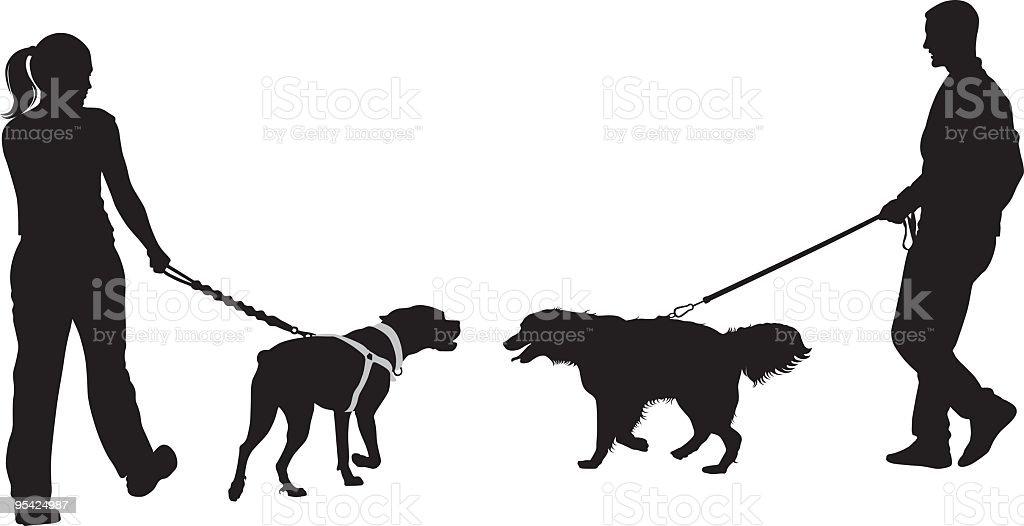 Boxer and Golden Retriever vector art illustration
