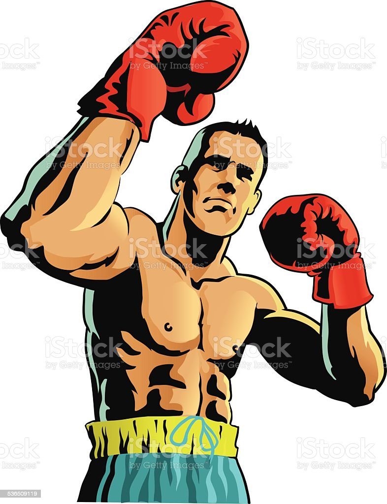 Boxer Isolated vector art illustration