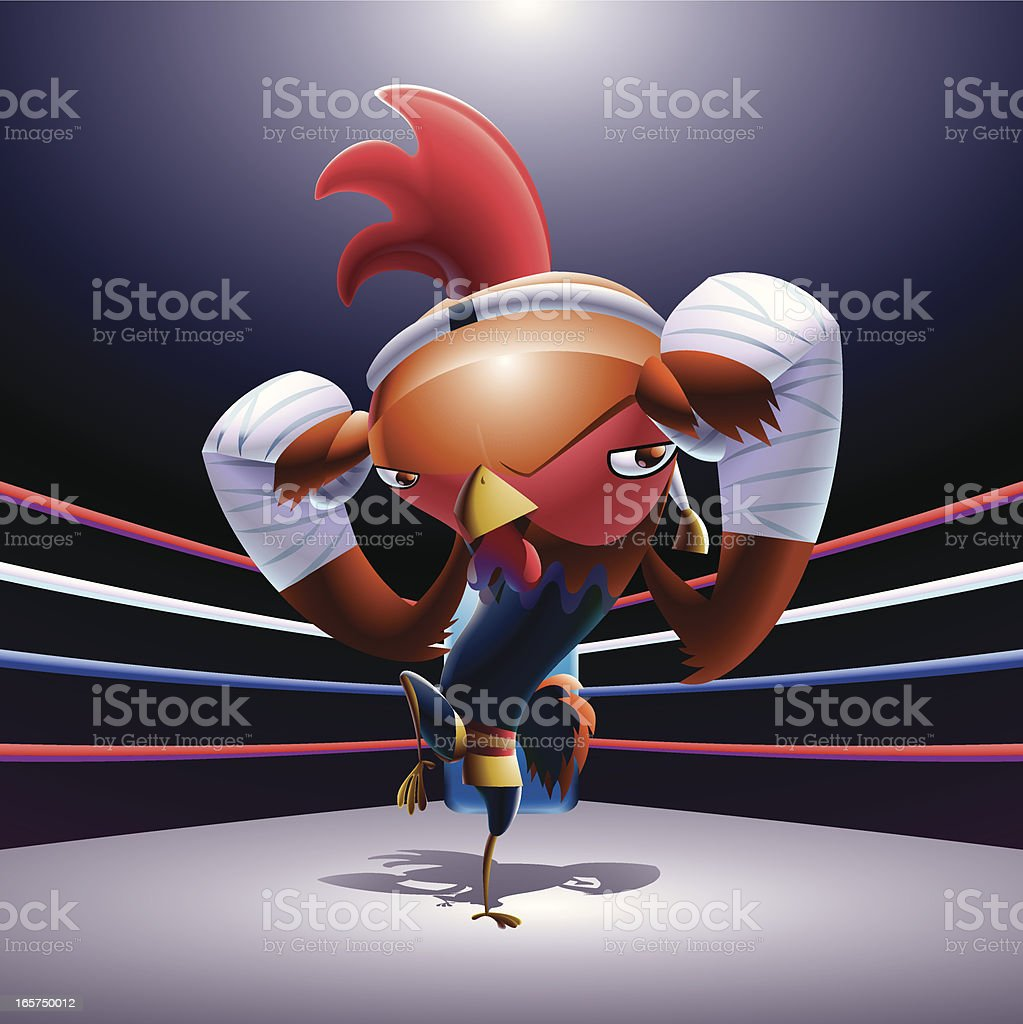 boxing chicken royalty-free boxing chicken stock vector art & more images of animal