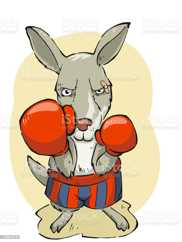 Boxing concentrated kangaroo with box gloves and short vector art illustration