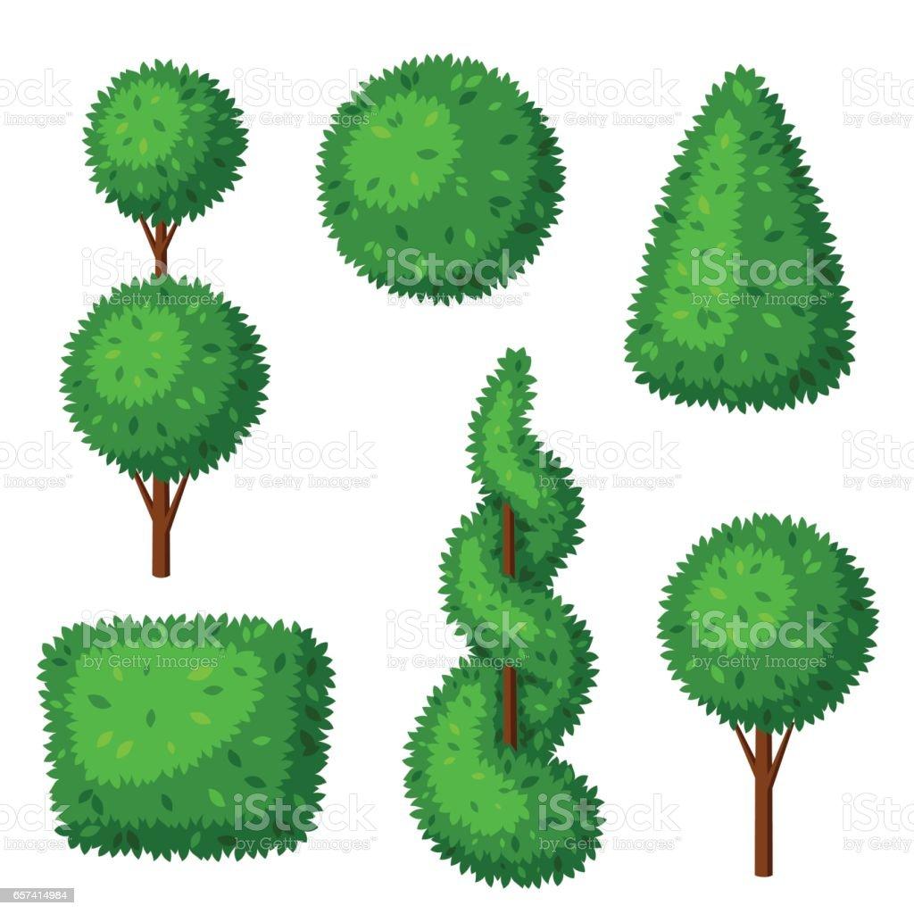 Boxwood Topiary Garden Plants Set Of Decorative Trees stock vector ...