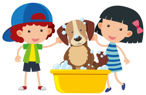 ilustraciones, imágenes clip art, dibujos animados e iconos de stock de niño y niña dando un baño para perros - animales de granja