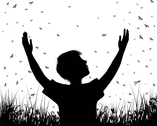 boy and many butterflies, try to catch butterfly, boy silhouette in the summer scene on the field, black and white story, childhood memories, vector boy and many butterflies, try to catch butterfly, boy silhouette in the summer scene on the field, black and white story, childhood memories, vector swarm of insects stock illustrations