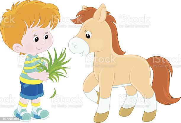 Boy feeds a pony vector id467203159?b=1&k=6&m=467203159&s=612x612&h=xda2zv6bvzjcga2mpfgc3vz7vd1ljxej shp35kwxt8=