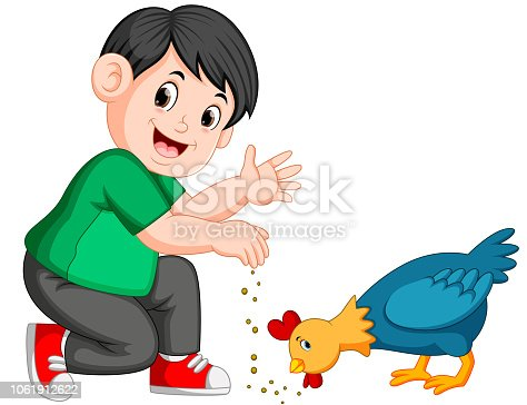 illustration of boy give seed to chicken eat