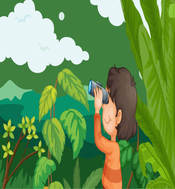 Boy in a forest vector art illustration