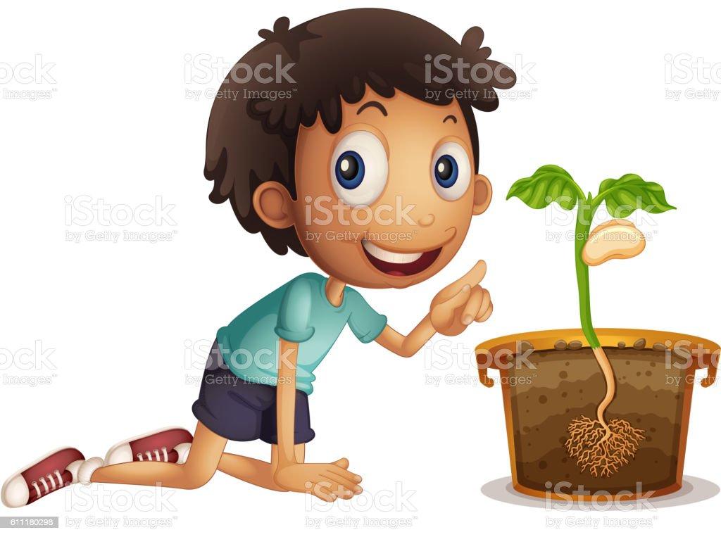 Seed That Boy