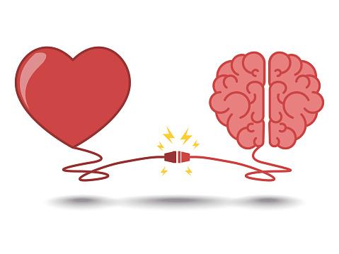 brain and heart interactions concept best teamwork