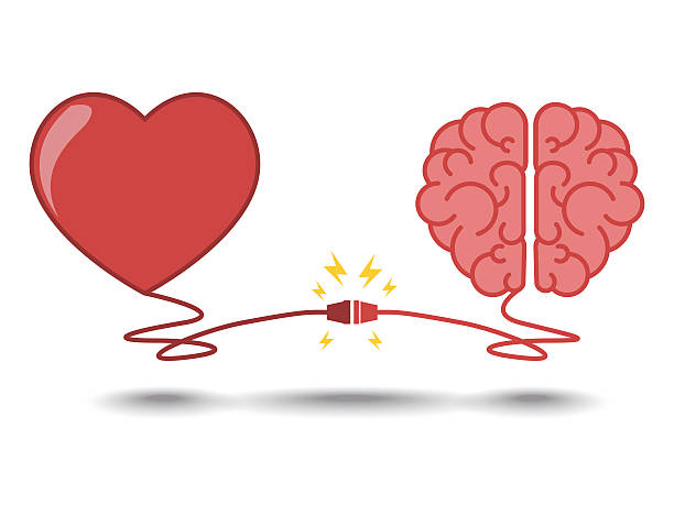 brain and heart interactions concept best teamwork - love emotion stock illustrations